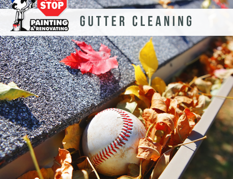 Why Should I Clean My Gutters?