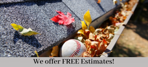Gutter Cleaning Free Estimates